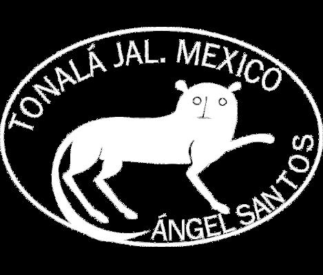 Angel Santos